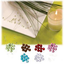 Perles de pluie translucide